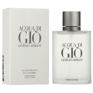 Acqua Di Gio Giorgio Edt 100ml Armani Perfume Importado Original Masculino