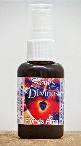 Seres Divinos - Expansor de Consciência (incenso líquido) - Flor da Alma