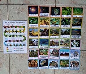 Flashcards de Geografia e História para atividades pedagogicas