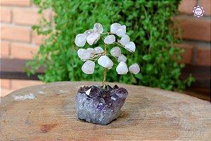 Árvore de Quartzo Rosa P com 13 cm base Drusa de Ametista 288g | Cristal do Amor Divino e Cura Emocional