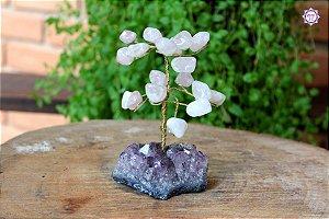 Árvore de Quartzo Rosa P com 12 cm base Drusa de Ametista 245g | Cristal do Amor Divino e Cura Emocional