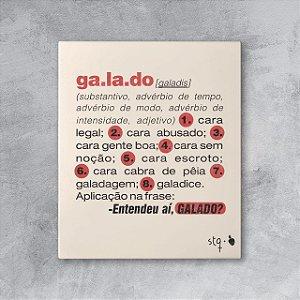 Quadro Galado Dicionário