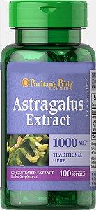 Astragalus – 1000mg - 100 Cápsulas