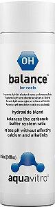 Tamponador Marinho pH Seachem Aquavitro Balance