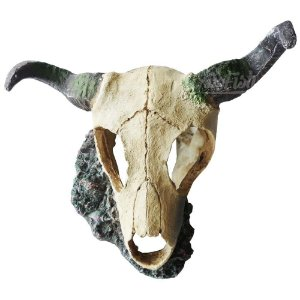 Enfeite Resina Craftwork Cranio de Touro CH-4612