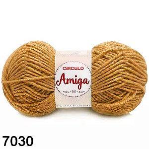 FIO AMIGA 100 GR COR 7030 MOSTARDA