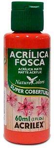 TINTA ACRILICA FOSCA GOIABA QUEIMA NAT. COLORS 60 ML ACRILEX