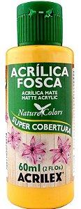 TINTA ACRILICA FOSCA MELÃO NAT. COLORS 60 ML ACRILEX