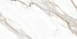 Porcelanato Polido P60541 62X1,20