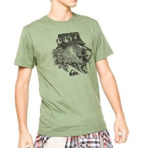 Camiseta Quiksilver SLIM FIT  THE KING - Green
