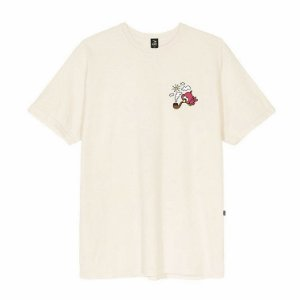 Camiseta Blaze Supply Tee Bird Off White
