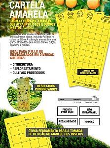 Cartela Amarela - Armadilha Adesiva - Pacote com 10 Cartelas