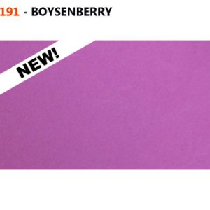 Fundo de Papel Boysenberry 2,72 x 11m - 191 USA