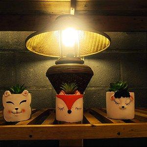 Trio Vasinhos Gatinhos  - resina 12cm