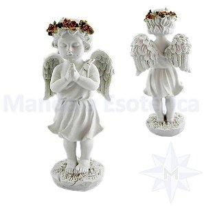 Anjo Branco em Oração