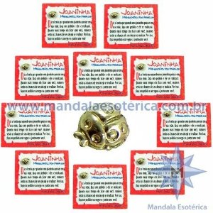 Amuleto Joaninha - Mensageira dos Desejos