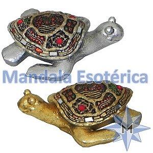 Tartarugas coloridas conjunto com 2