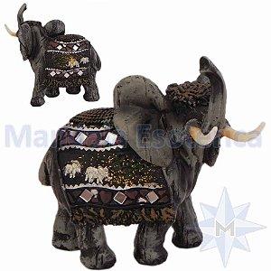 Elefante Colorido pequeno - B