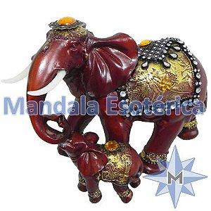 Elefantes mãe com o filhote