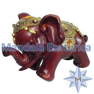 Elefante marrom