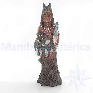 Índio xamã guerreiro escudo com águia