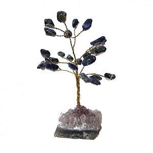 Árvore de Sodalita e Base de Drusa Bruta Pequena