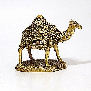 Camelo Egípcio Dourado