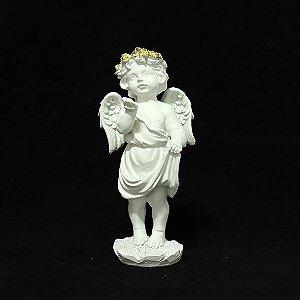 Anjo Branco em Paz