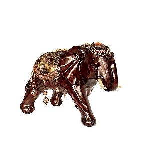 Elefante Marrom Manto Dourado