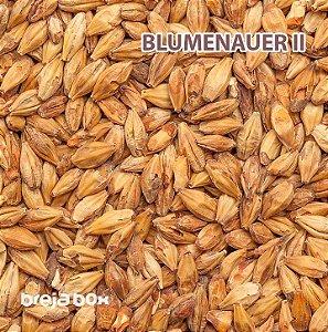 Malte Blumenauer II Blumenau | 250-300 EBC Breja Box