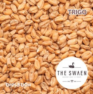 Malte de Trigo The Swaen | 3 - 5 EBC Breja Box