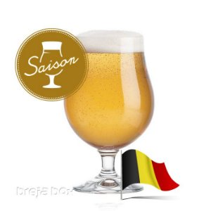 Saison kit receita - Breja Box