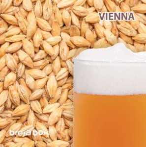 Malte Vienna Best Malz | 8-10 EBC Breja Box