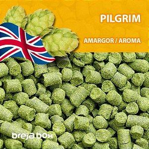 Lúpulo Pilgrim - 50g em pellet