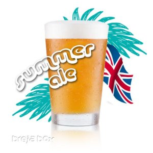 Summer Ale kit receita - Breja Box
