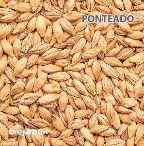 Malte Ponteado (Carapils) Blumenau | 3-7 EBC Breja Box