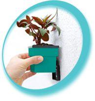 Suporte de Parede Para Vaso Auto Irrigável Plantamos