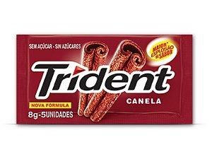TRIDENT CHICLETE CANELA 8g