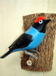 Tangará - Pássaro esculpido em madeira apoiado em um puleiro de casca de árvore