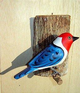 Galo de Campina - Pássaro esculpido em madeira apoiado em um puleiro de casca de árvore