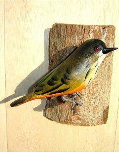 Sabiá Laranjeira - Pássaro esculpido em madeira apoiado em um puleiro de casca de árvore