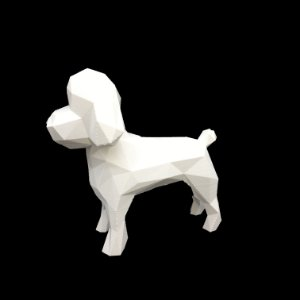 Poodle Miniatura