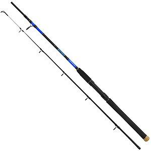 Vara Daiwa Beef Stick 602MHFS-BR 20-40lb 1,83m 2 Partes