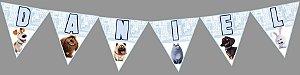 Bandeirinha Personalizada A Vida Secreta dos Bichos