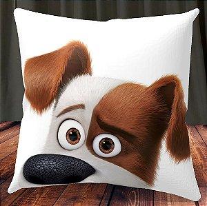 Almofada Personalizada para Festa Pets - A Vida Secreta dos Bichos 1