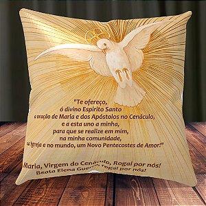 Almofada Personalizada para Festa Beata Elena Guerra 2