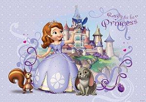 Painel TNT Princesa Sofia