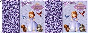 Embalagem com 2 rotulos Toddynho Princesa Sofia
