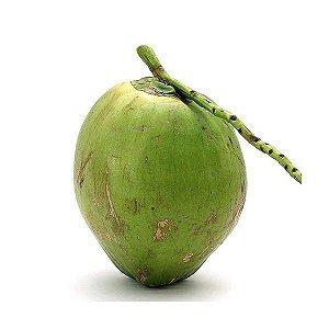 Coco Verde - Unidade
