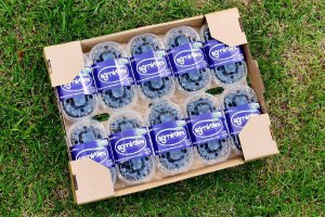 Mirtilos Orgânicos (Embalagem)